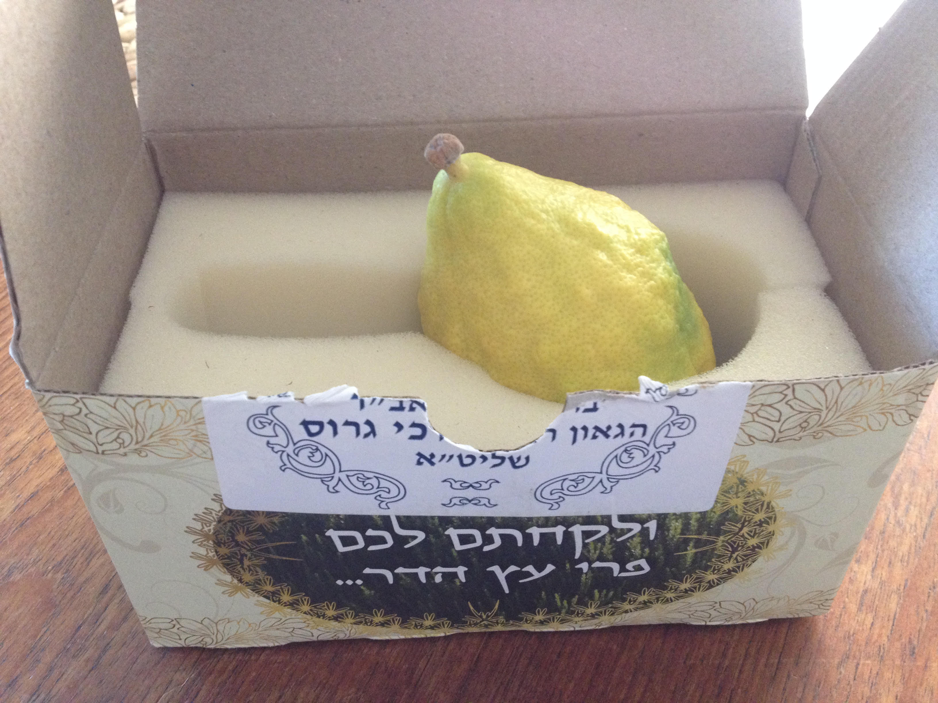 the world s most expensive lemon the economics of an etrog the